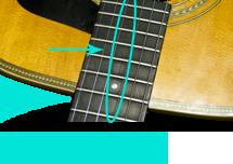Acoustic Fretboard Repair