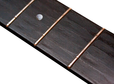 Electric Guitar Worn Frets